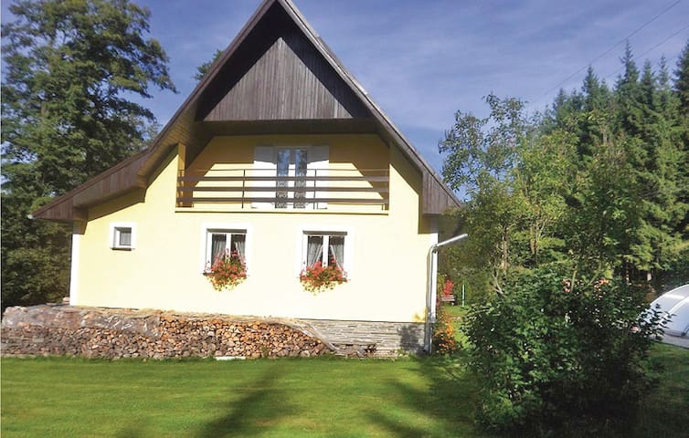 Holiday cottage with 3 bedrooms on 150 m² in Bruntal