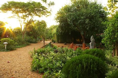 Joeri, Gaia's Garden Guest House in Auroville