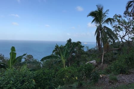 Rainforest Room with Mountain and Ocean View!!! - Cacique