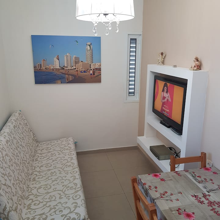 Great 1-bedroom apartment (009)