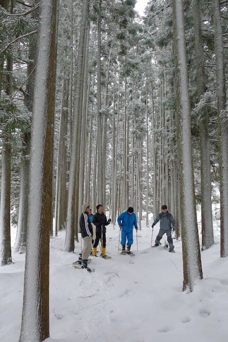 Snow shoe hike tour \1,500 p/person(2 hours)