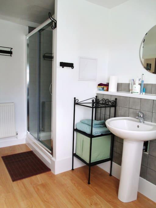 Modern bathroom with large walk-in shower