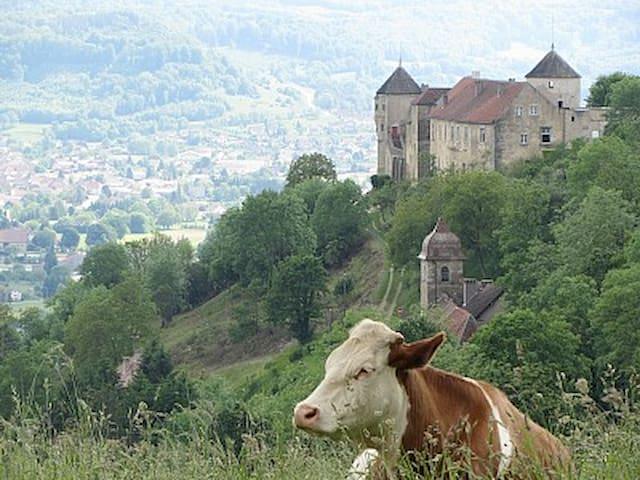 Gîte Béatrix de Cusance - Belvoir - Slott