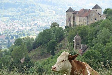 Gîte Béatrix de Cusance - Belvoir - Castle