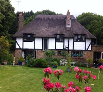 Self-contained thatched studio apartment in Esher - Esher - Lejlighed