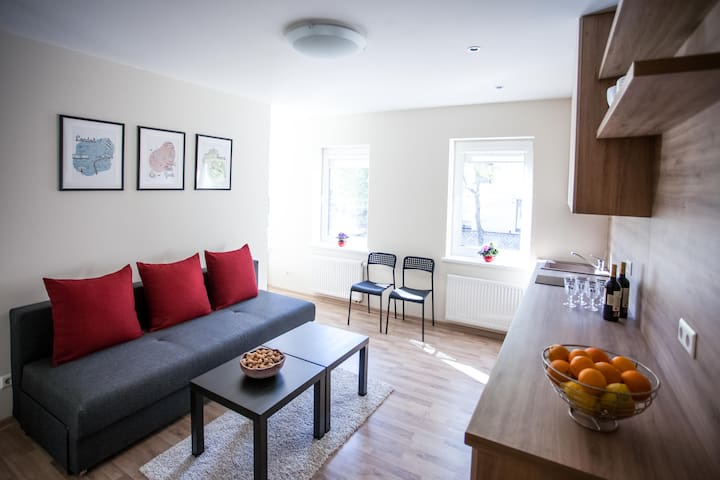 Comfortable apartment Kaunas city, from street