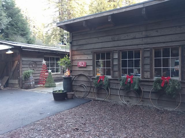 Holiday decor at FlipJack Ranch