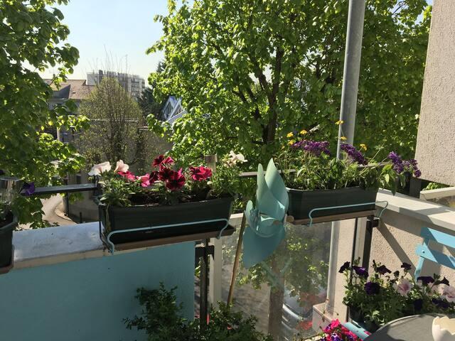 Chambre agréable proche Paris/Orly avec jardin p/1
