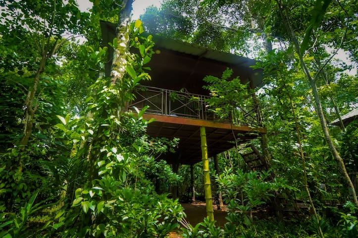 Monsoon Retreats Ecostay: Bird watcher's Paradise