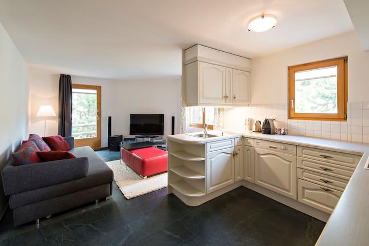 Wohnung al flüm - Celerina/Schlarigna - Apartamento