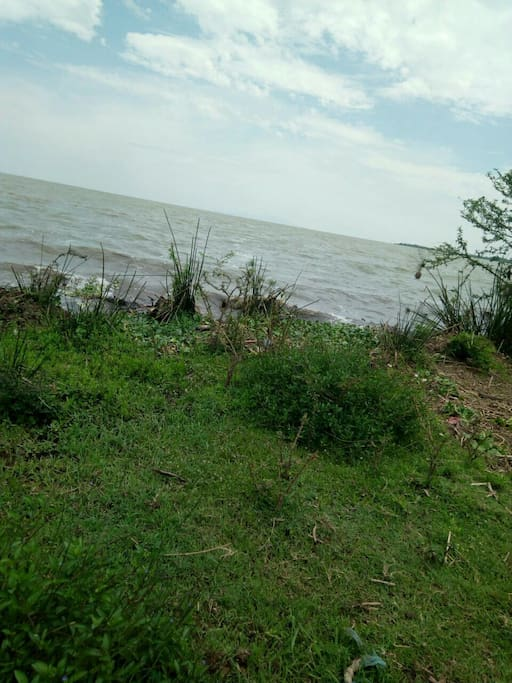 The gentle waves of lake Victoria touching the property