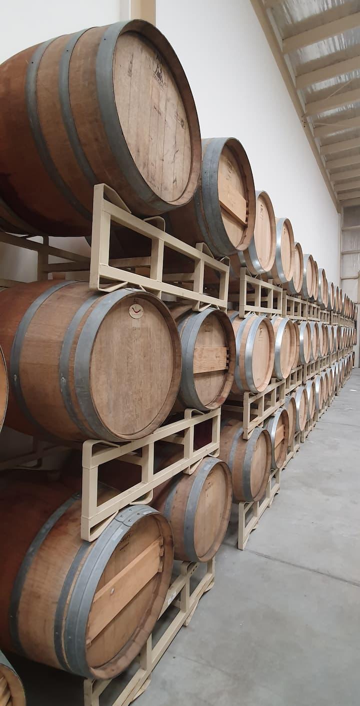 Barrel Room/ Cava