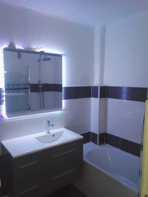 Salle de bain : Baignoire avec douche integré