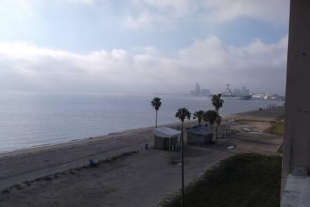 Corpus Christi Beach Condo 1300 - Corpus Christi