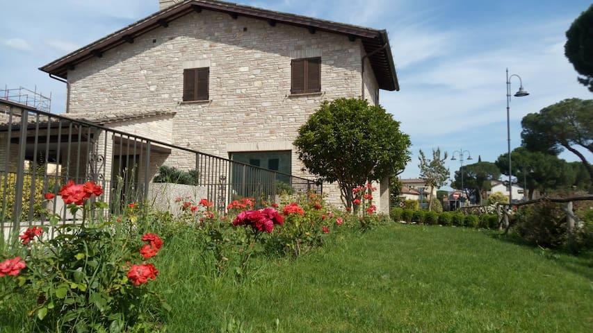 Appartamento vacanze Saint Mary - Assisi - Santa Maria degli Angeli - Lägenhet