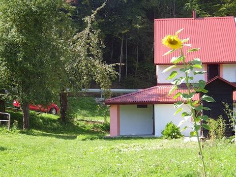 House in village-Kuća u Lici