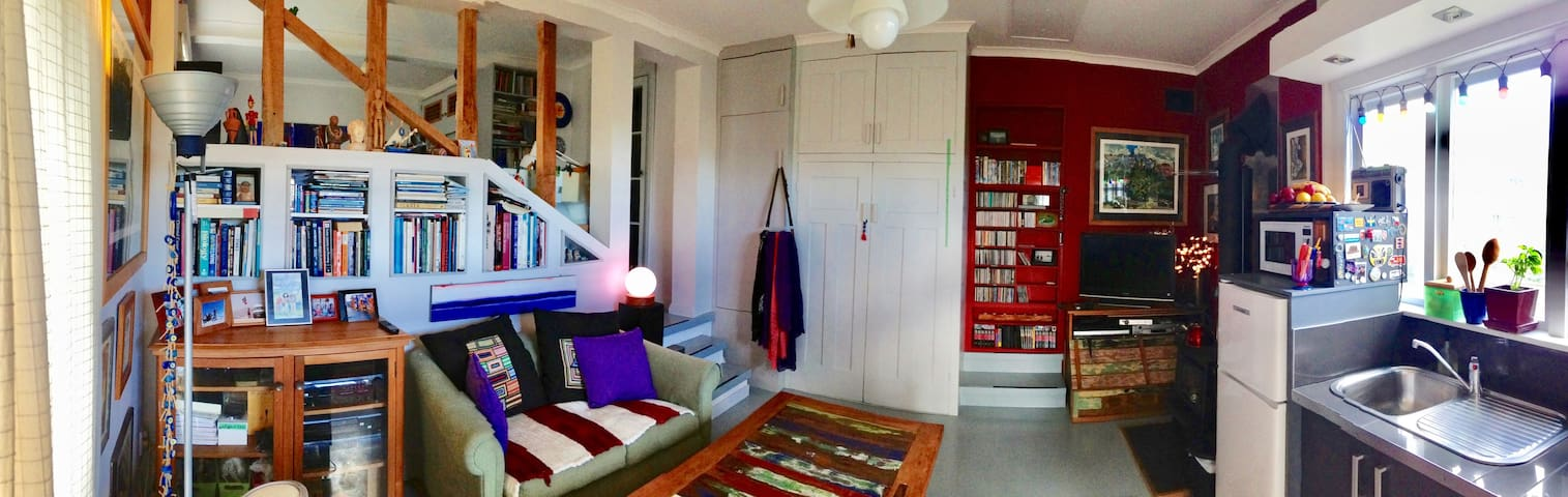 Lounge with lots of books and DVDs