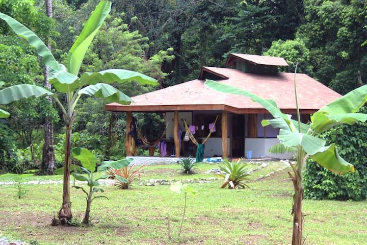 Holiday house in wild nature, near the beach C 1