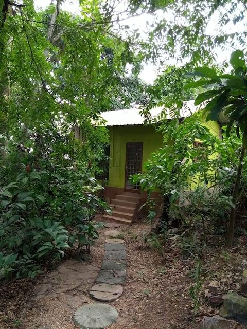 Casinha Manaus