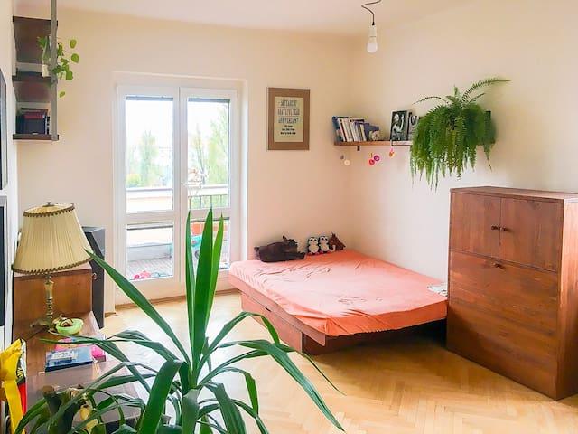 Sunny room near city centre with beautiful terrace