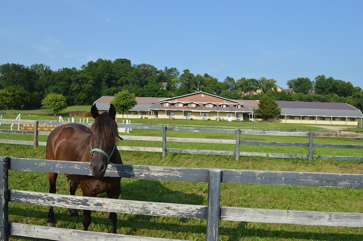 Riverview Equestrian Ctr. - Apt 3 - near Chestnut