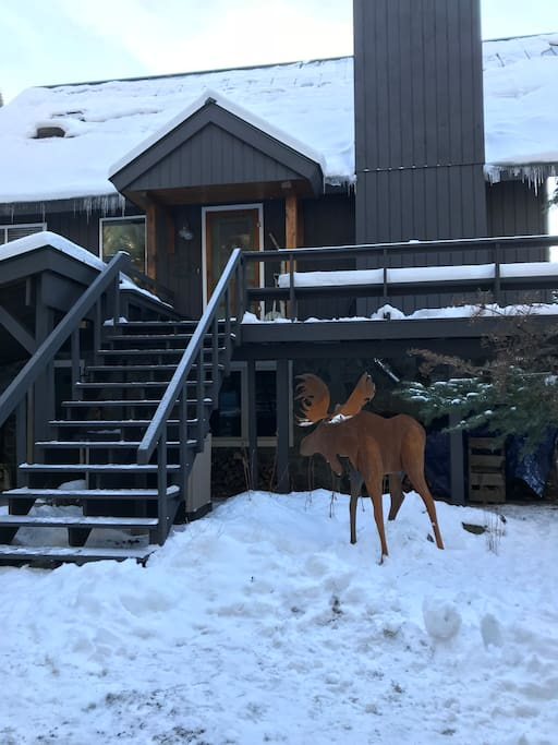 Amos the Moose greets all the guests