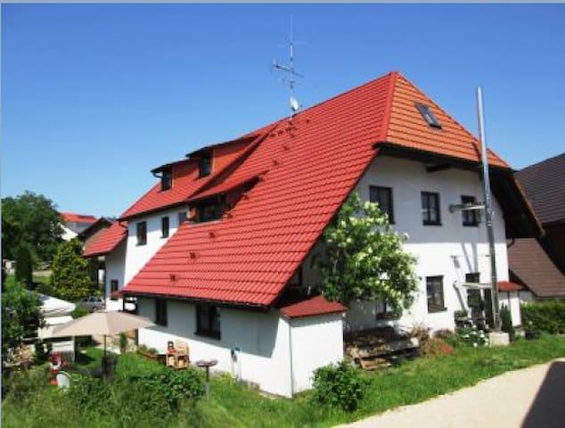 Günstiges Appartment in Niederwihl - Görwihl - Apartamento