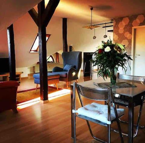 Schöne helle Wohnung mit Schlossblick