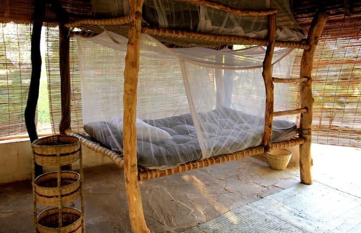 Distant Relatives Ecolodge: Dorm