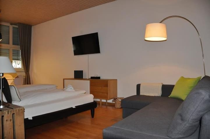 Zentral gelegene Unterkunft - Villigen - Appartement