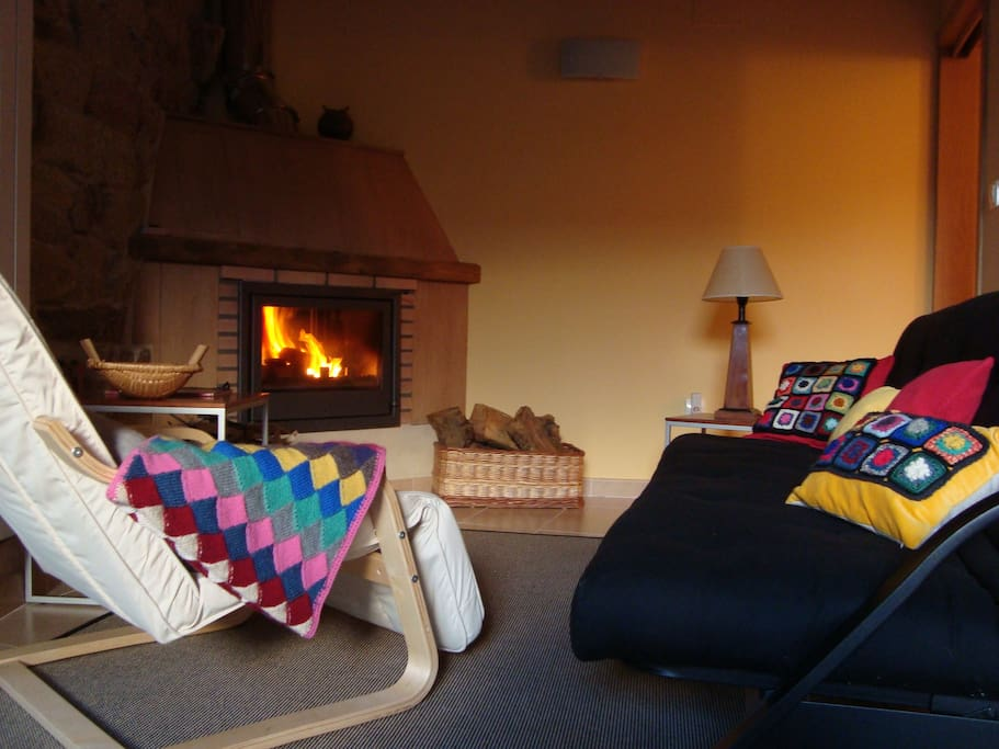 Living room with eco-fireplace