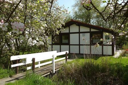 Great House Altes Land 4721.2 - Hollern-Twielenfleth - Villa