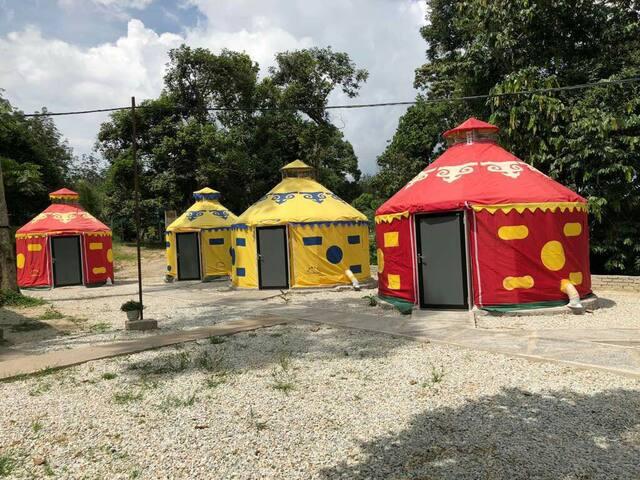 开心蒙古包(4位)Big Yurt. RM250/night with 4pax breakfast