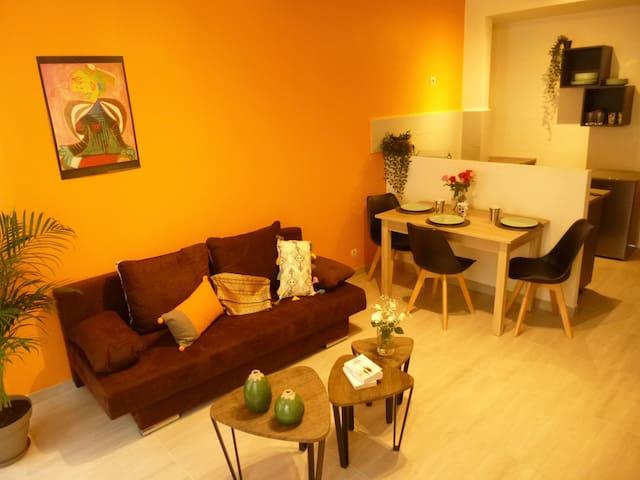 """Arles Centre : """"Les Volets rouges"""" Appartement 2"""