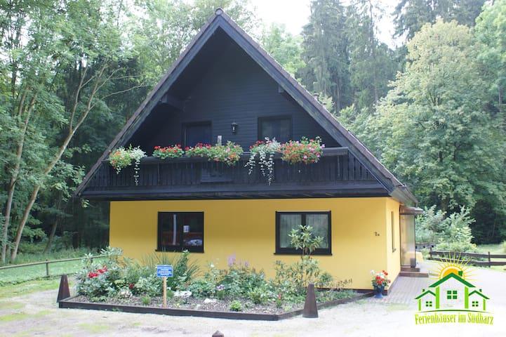 Gruppenhaus bis 12 Personen - Bad Sachsa - House