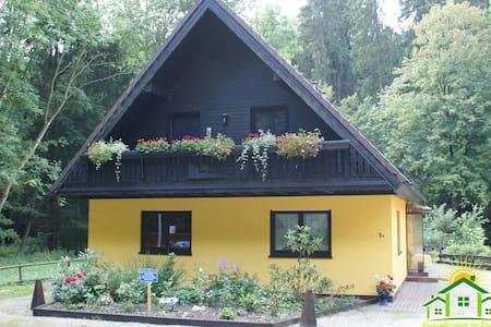 Gruppenhaus bis 12 Personen - Bad Sachsa