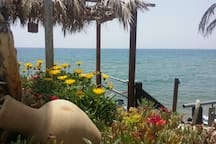 Restaurant near sea