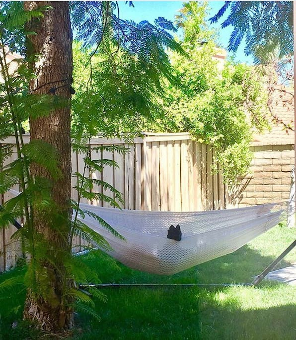 Feel free to chill and relax in the hammock under the shade of the tree