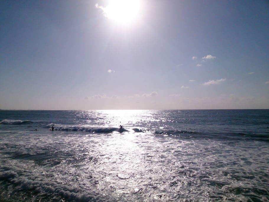 本島№1サーフィン&ダイビングスポットとして有名な砂辺海岸まで徒歩5秒!
