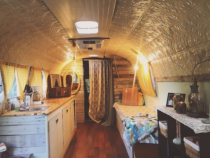 1969 Airstream Land Yahct with Mountain View