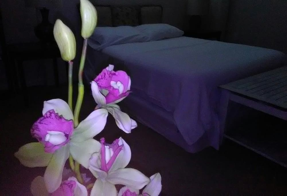 Private room queen Memory Foam bed for minimum of 2 reservation, up to family of 4.