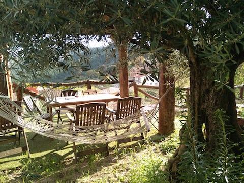 Hyggelig hus med smak fra gamle dager i Riopar.