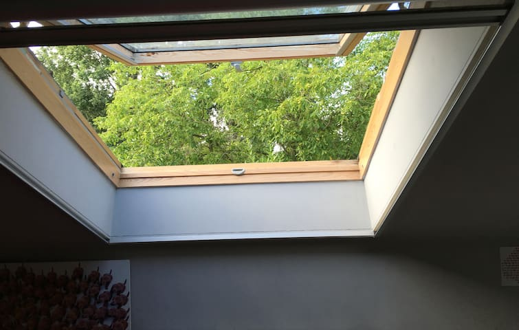 A Window in the roof ... with a view on the Nature ...