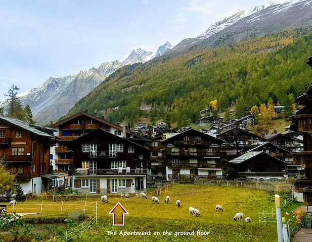 Matterhorn view chalet & homestay