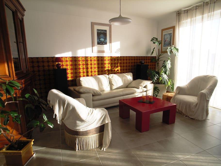 Grand salon équipé de fauteuils, canapé cuir, télévision 102 cm, lecteur DVD, ...