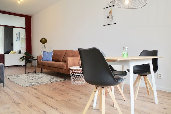 Newly renovated city apartment Rotterdam