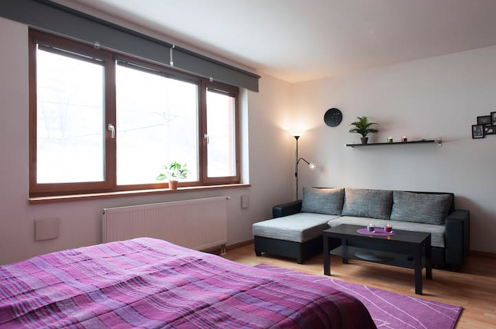 FLAT WITH GARAGE near city centre