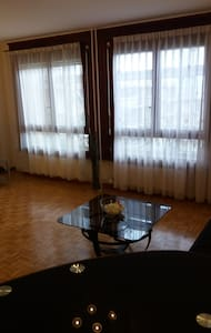 Bright and cozy studio flat - Lancy - Apartmen