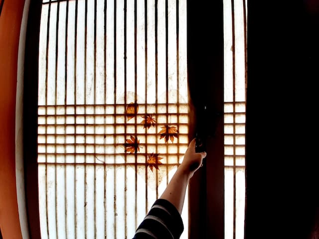 [전라남도보성][개인룸]한옥 정원펜션🙇🏻♀️놀러오세요 혼자서도 둘이서도~ 💕