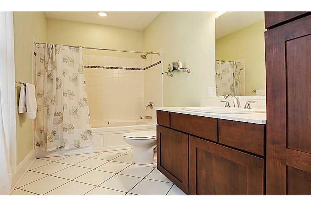 Downstairs Master suite bath